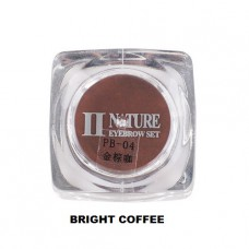 Пигмент PCD (Bright coffee)